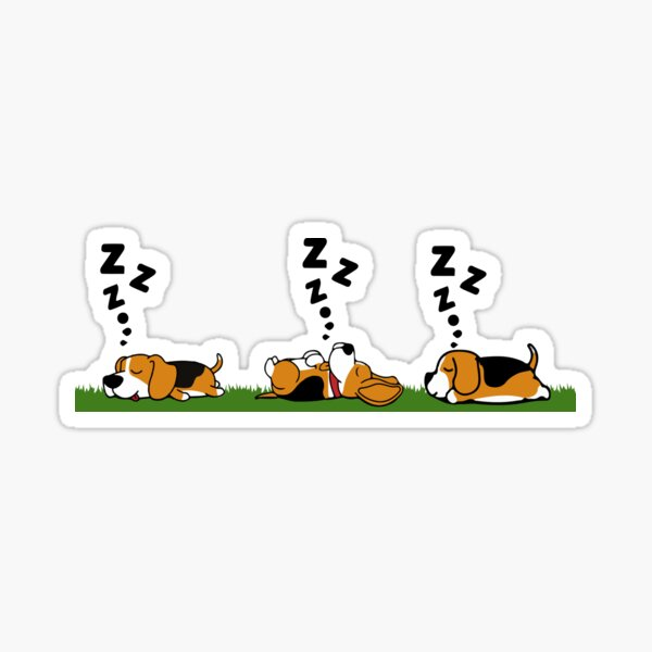 Sleeping Beagle Dog Sticker