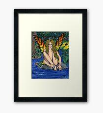 Butterfly Stone Framed Print