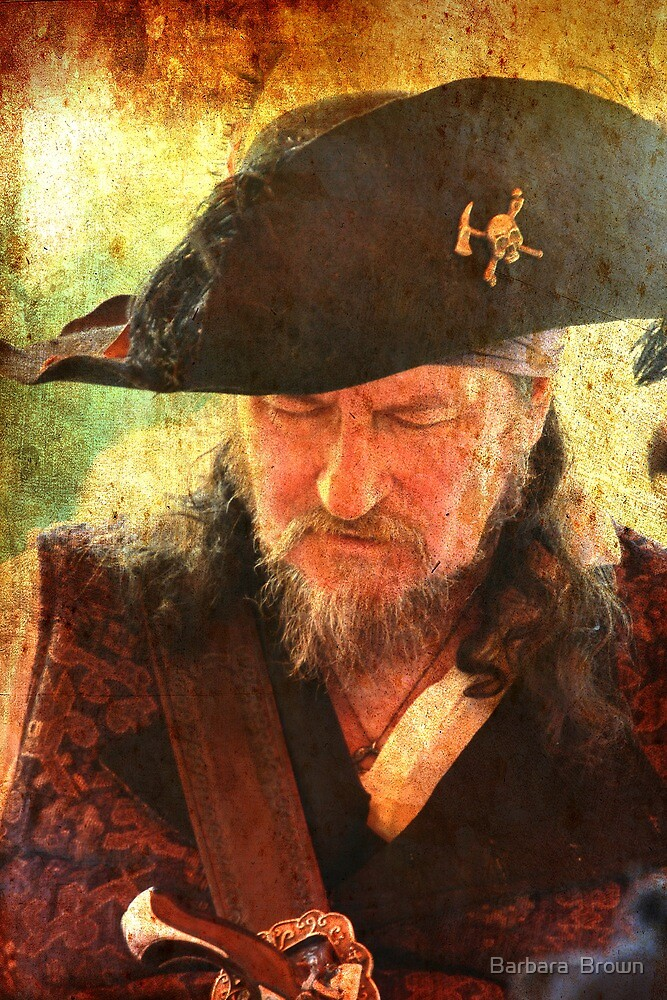 A Pirate's Life for Me by Barbara  Brown