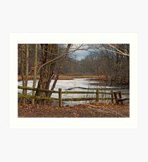 The Marsh Art Print