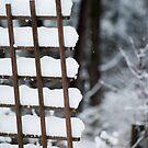 Snow Covered Lattice by LisaPiellusch