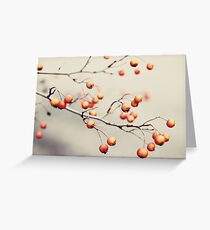 berries in the woods Greeting Card