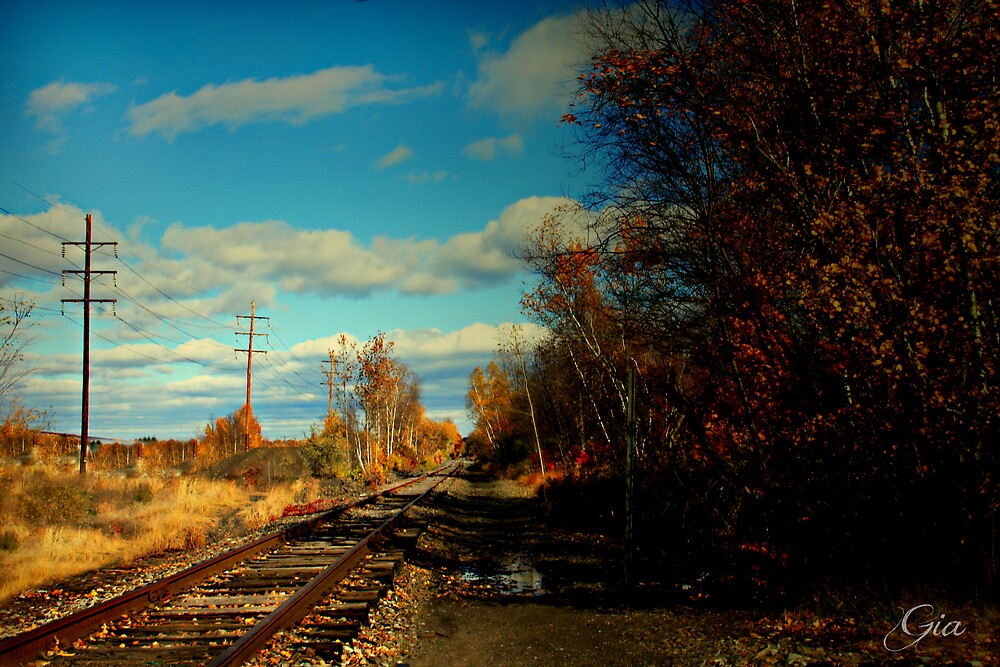 """"""" The Sunny Side Of The Tracks """" by Gail Jones"""