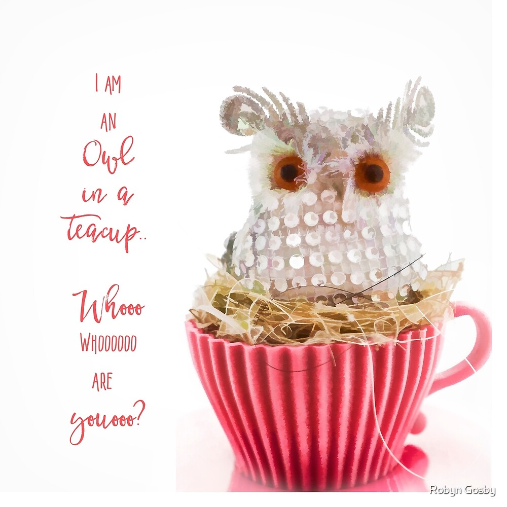 Owl in a teacup.. by Robyn Gosby