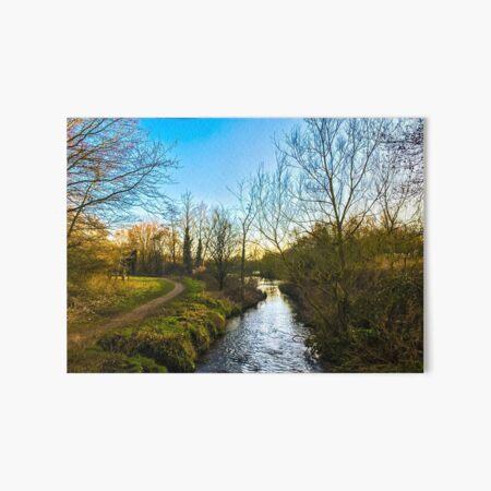 Gently down the stream Art Board Print
