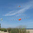 Flying High by Monnie Ryan