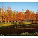 加拿大國家地理公園 by PHILIP H.P. WONG