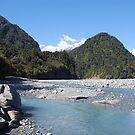 Glacial River, Franz Joseph Glacier, NZ by Catherine Davis