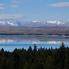 Lake near Mt Cook, NZ by Catherine Davis