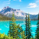 Emerald Lake by Dave  Gosling Photography