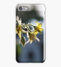Tomato flowers iPhone Case/Skin