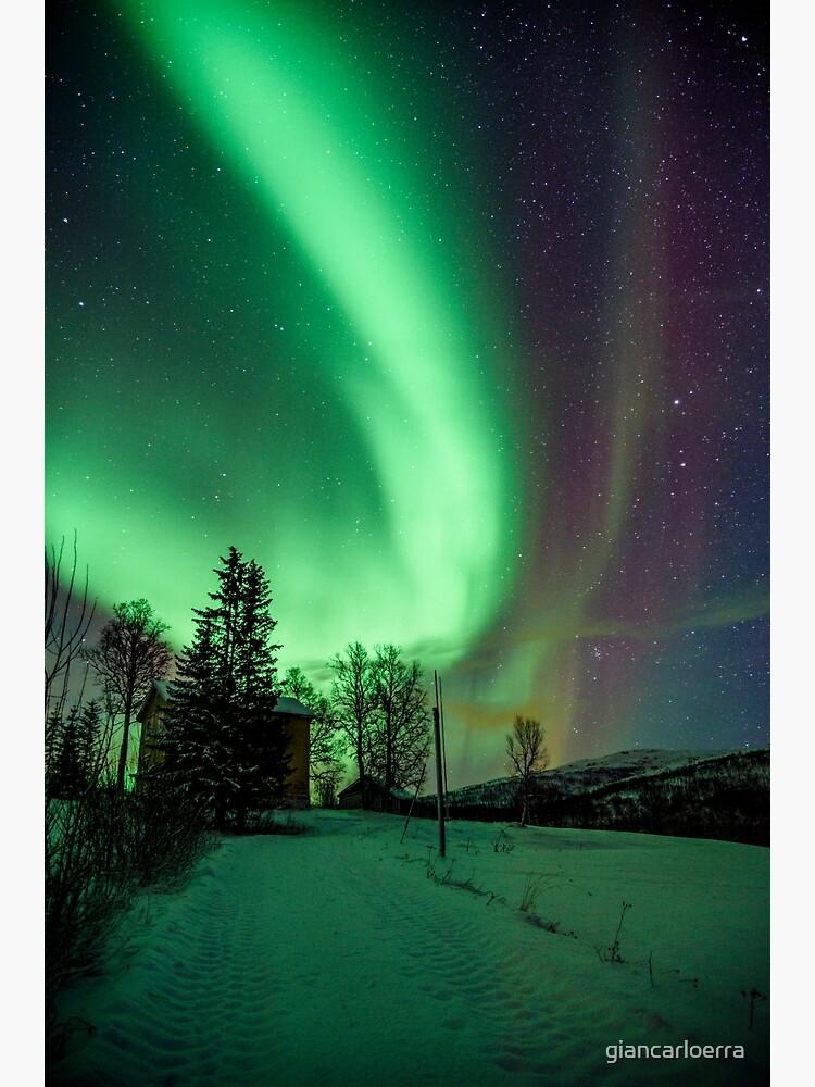 Northern Lights - Norway (Storteinnes) by giancarloerra