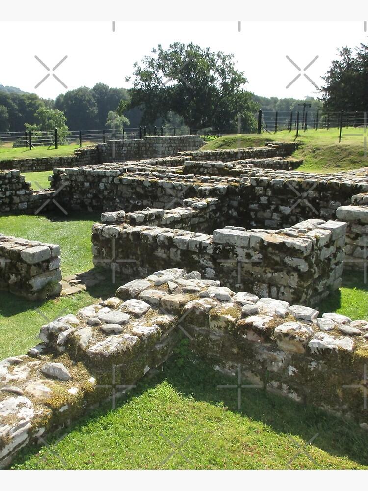 M.I. #83  ☼  Rocks And Bricks - Shot 5 (Hadrian's Wall) by Naean