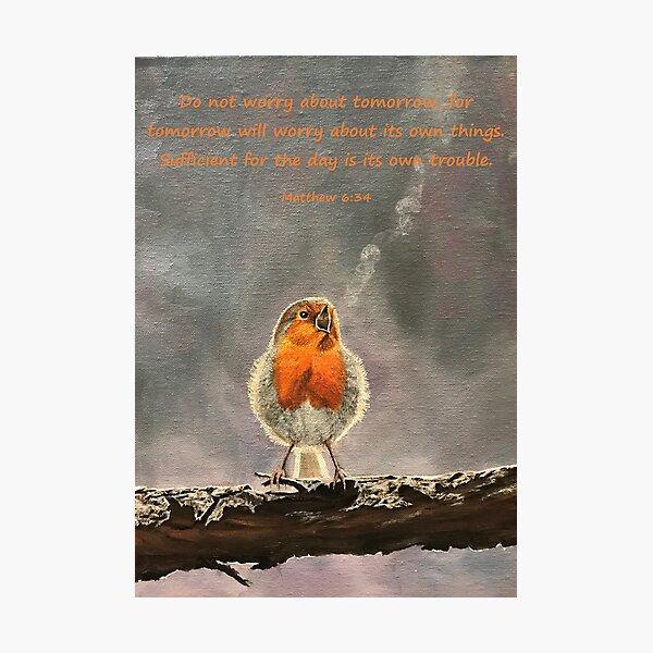 The Beauty of Birdsong - Matthew 6:34 Photographic Print
