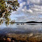 Early Morning - Swansea NSW Australia by Bev Woodman