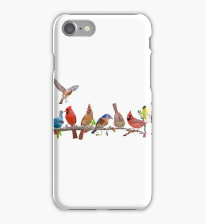 Rejoice! There's a lot to sing about . . . iPhone Case/Skin