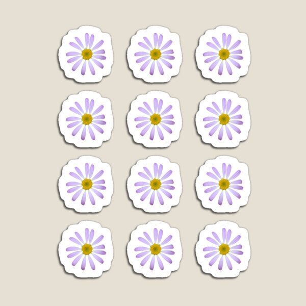 Purple Daisy Magnet