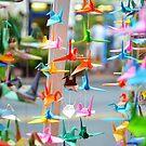 Color Cranes  by Allison  Flores