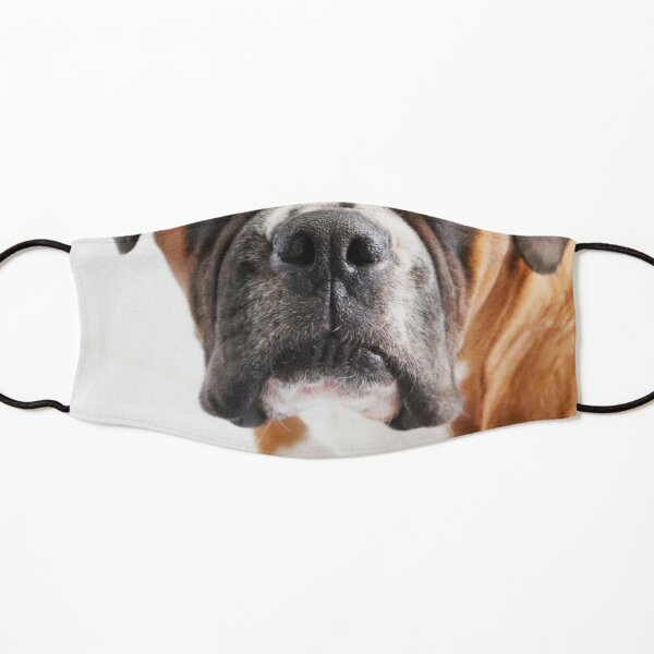 Dog Nose Boxer Kids Mask