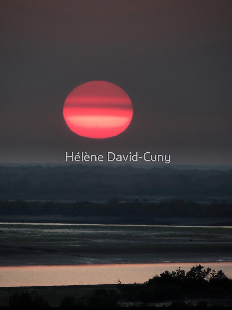 Say it in red by Hélène David-Cuny