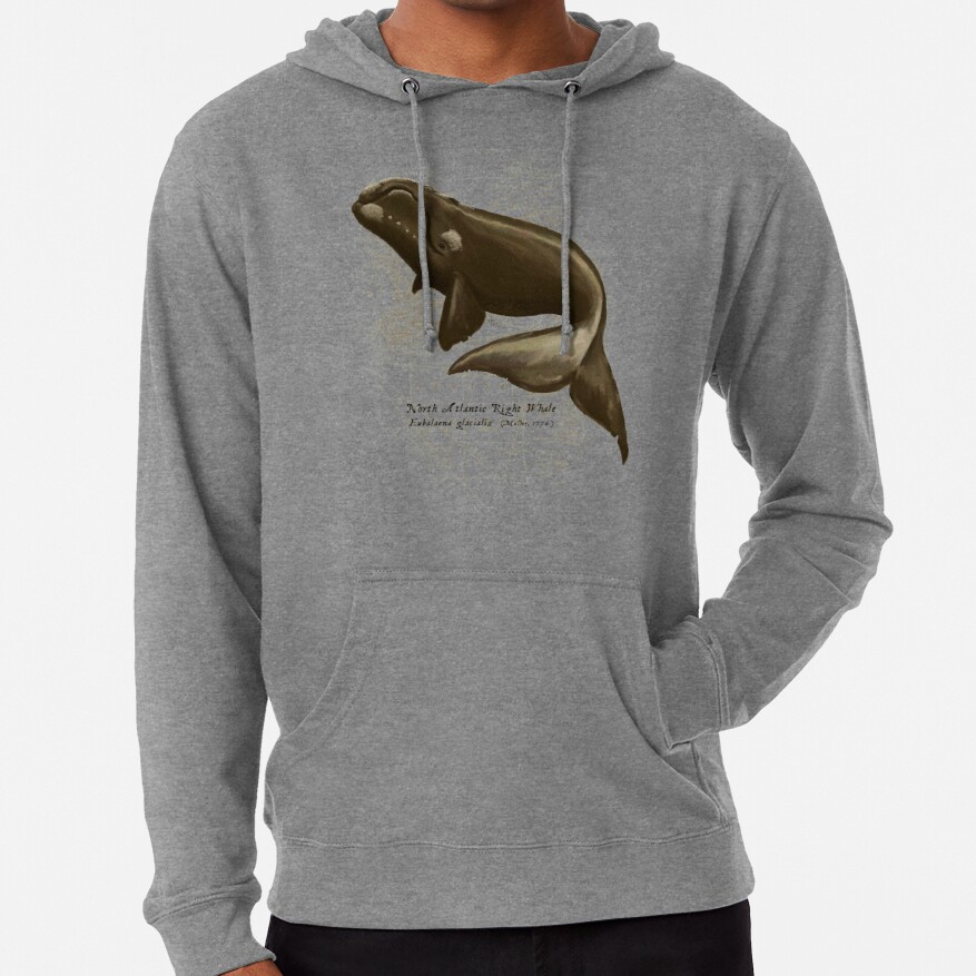 North Atlantic Right Whale ~ Illustration by Amber Marine, © 2015 Lightweight Hoodie