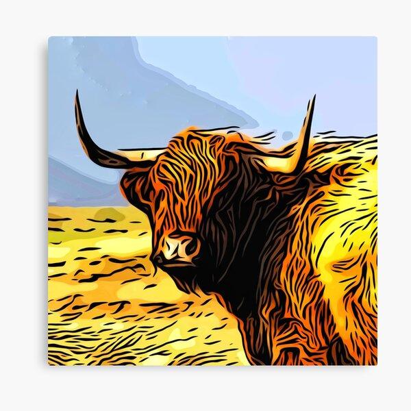A highland coo on Hoy Canvas Print