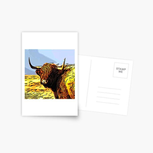 A highland coo on Hoy Postcard