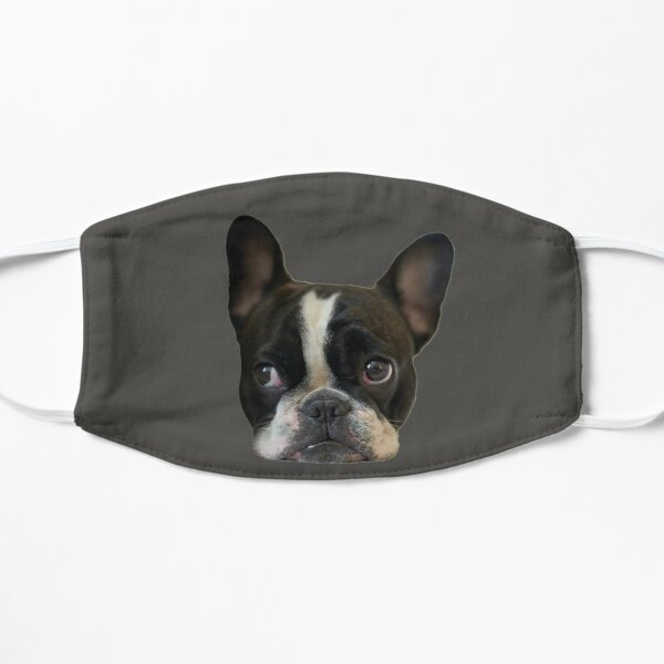 Happy Frenchie face Mask Mask