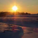 A Golden Winter's Evening by lorilee