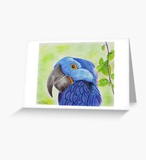 Blue Smiling Parrot on Green leaves Background Greeting Card