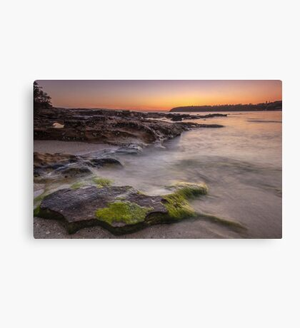 Balmoral Beach Sunrise Canvas Print