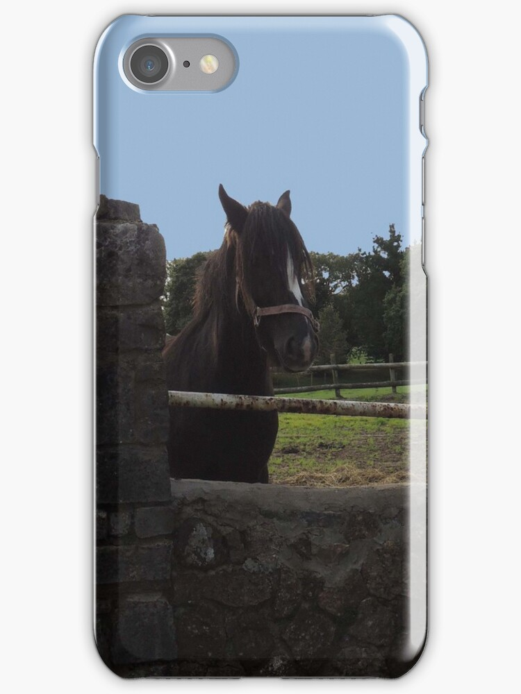 Horse in Gower Iphone/Samsung Case by CreativeEm