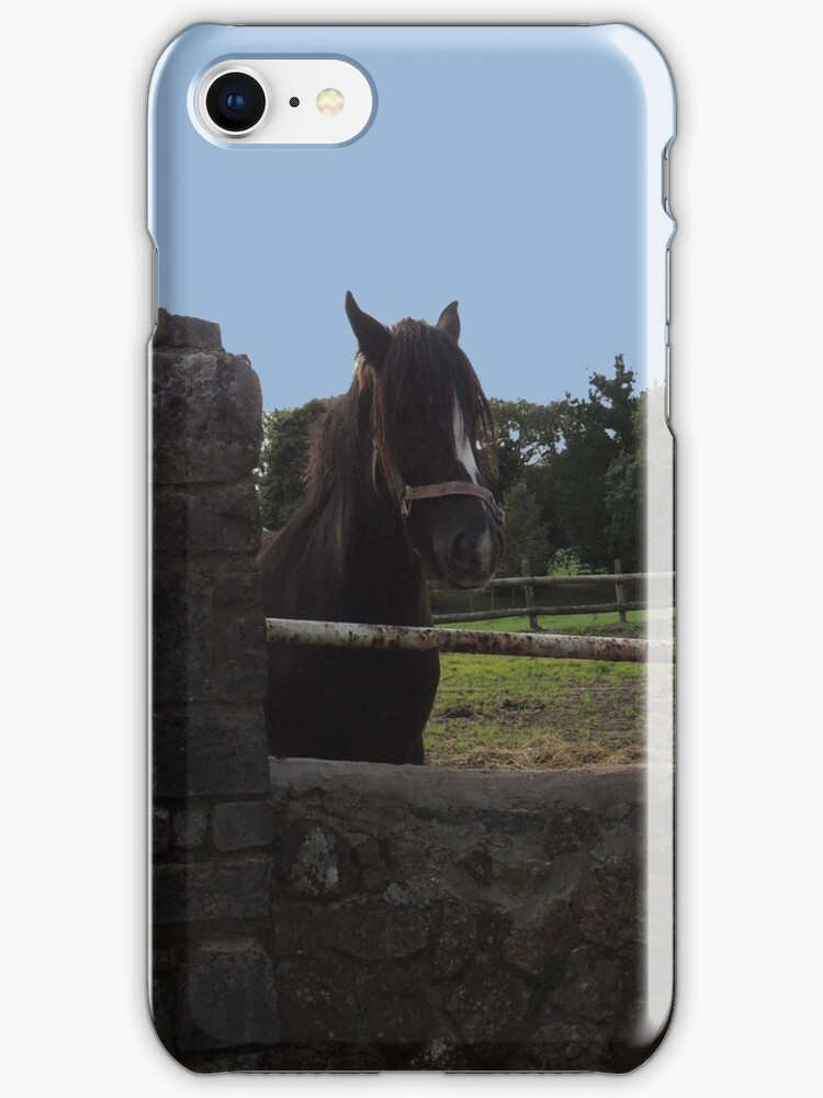 Horse in Gower Iphone/Samsung Case by CreativeEm