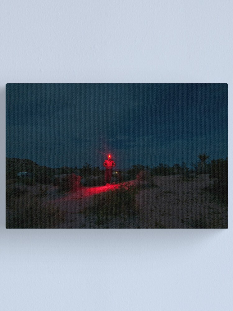Alternate view of Man with Red Light - Joshua Tree Canvas Print
