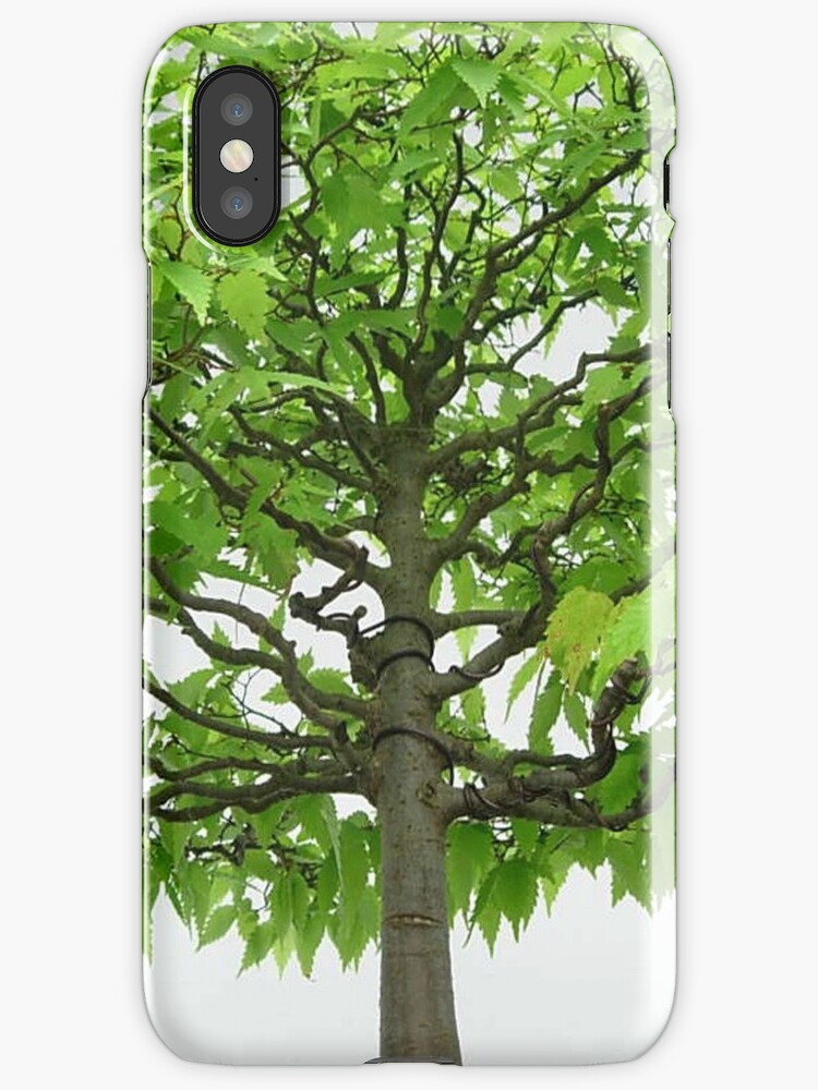 Bonsai Tree Iphone case by CreativeEm