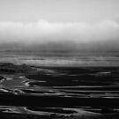 Bio Bio river mouth by Francisco Larrea