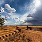 The Dry Storm by David Haworth