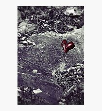 Battlefield of Love Photographic Print