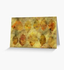 Leaf story Greeting Card