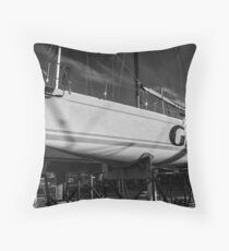 High and Dry BW Throw Pillow