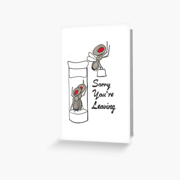Sorry your leaving fruit fly card Greeting Card