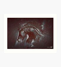 DARK HORSE Art Print