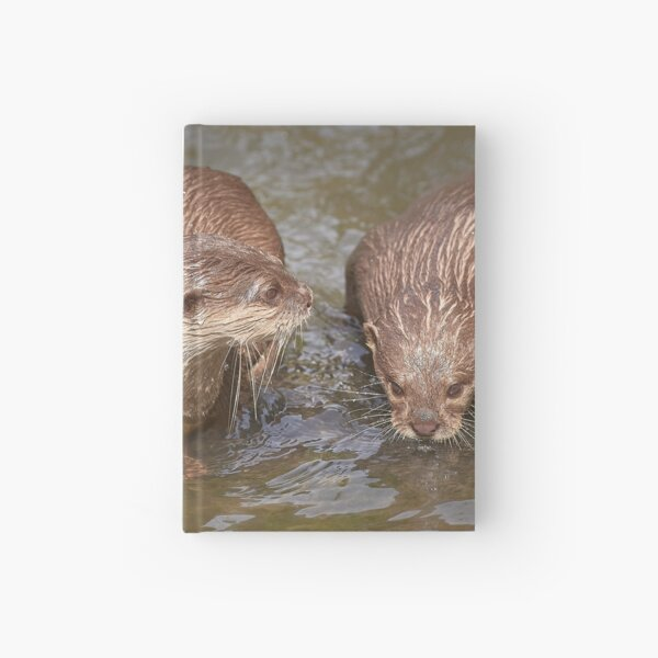 Otters Wet Your Whiskers Hardcover Journal