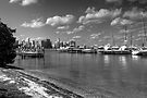 Rickenbacker Marina by Bill Wetmore