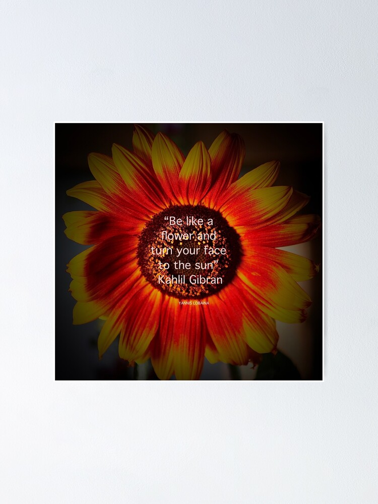 Alternate view of Be a sunflower By Yannis Lobaina Poster