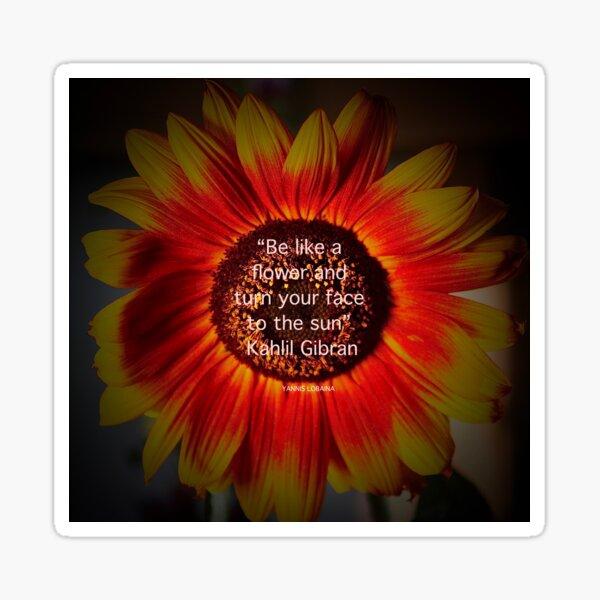 Be a sunflower By Yannis Lobaina Sticker