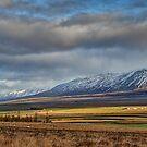 Icelandic Farmland by Peter Hammer