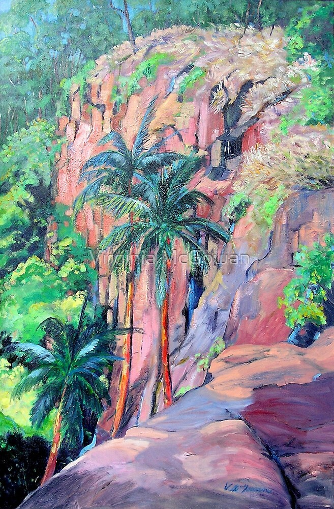 Cameron Falls Tamborine Mountain #2 by Virginia McGowan