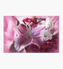 Valentine in Pink Fotodruck