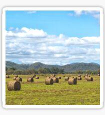 Hay bales in a rural field Sticker